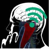 דמנציה סביבתית - פגיעה מוחית מקרינה בלתי מייננת ומזיהום